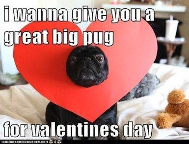 Valentine-Day-Memes